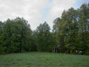 Лесопарк «Сурошникова дача» в Криуше, фото Владимира Бакунина