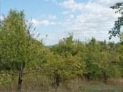 Бывшая усадьба Рюминых, фото Владимира Бакунина